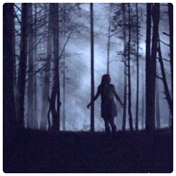 http://www.thomaskathriner.at/wp-content/uploads/vampiresOfVienna_teaser2.png